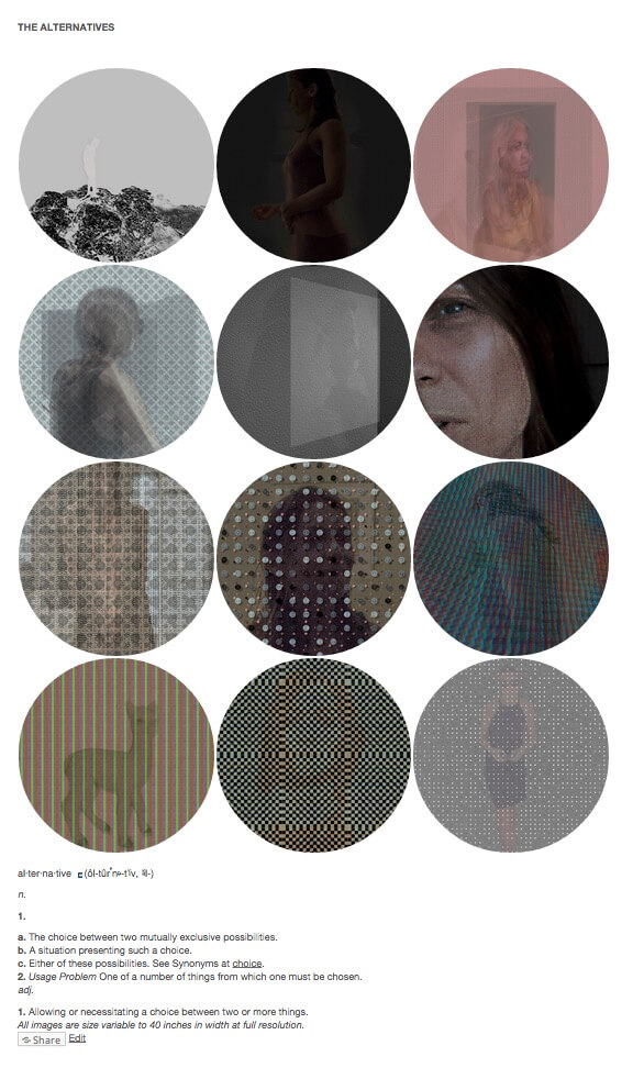Matthew Swarts, THE ALTERNATIVES (2014)